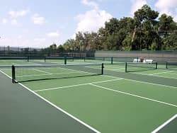 Pickleball Court Near Me